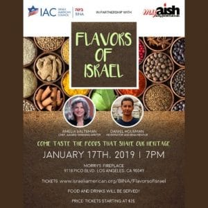 MyAish Flavors of Israel - Aish LA Website